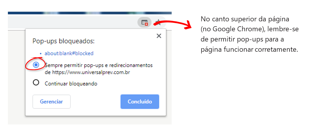 No canto superior da página (no Google Chrome), lembre-se de permitir pop-ups para a página funcionar corretamente.